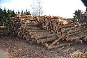 Rondhout klaar voor transport